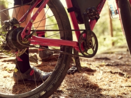 Riemen Fahrrad Antrieb